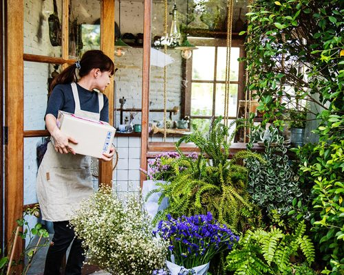 Indore Online Florist